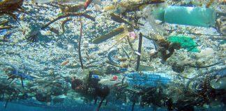 Gli Stati Uniti sono i più grandi produttori di rifiuti in plastica