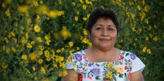Un'apicultrice maya