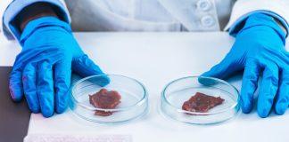 Il futuro della carne per la salvaguardia dell'ambiente