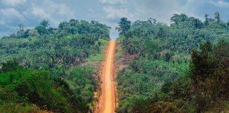 autostrada amazzonica