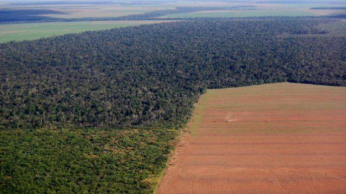 L'Amazzonia è in pericolo. Stop al Trattato
