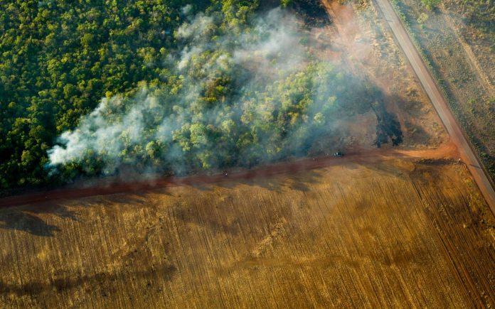 Per salvare l'Amazzonia fermiamo il