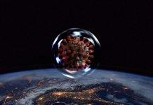Devastazione ambientale e globalizzazione: le