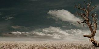 La siccità è un dramma ambientale e umanitario