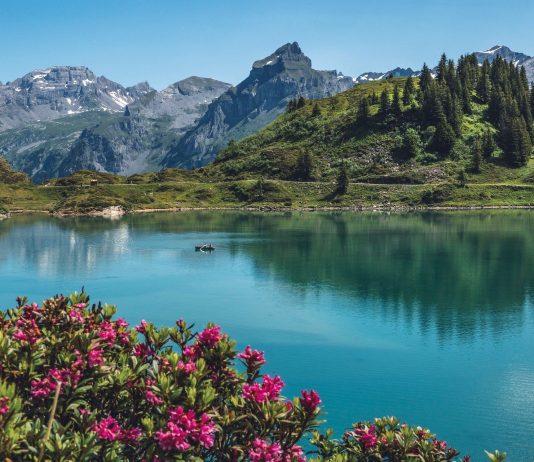La riduzione di ossigeno nei laghi