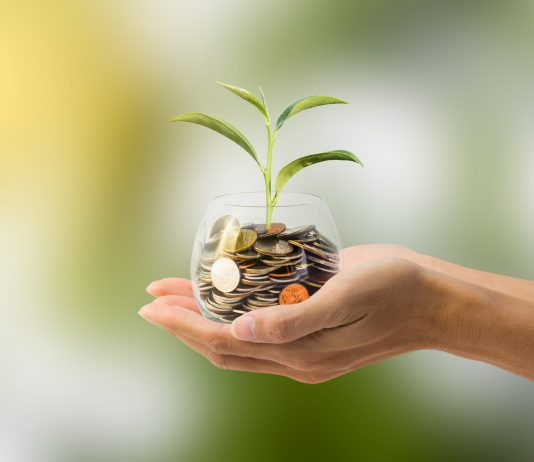 Le imprese verdi resistono alla