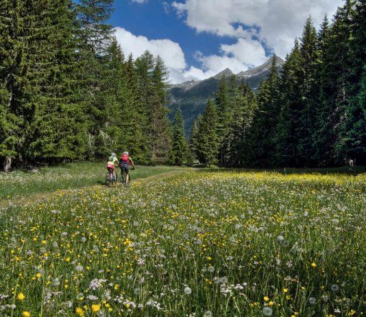 Il cicloturismo motore del rilancio per il turismo